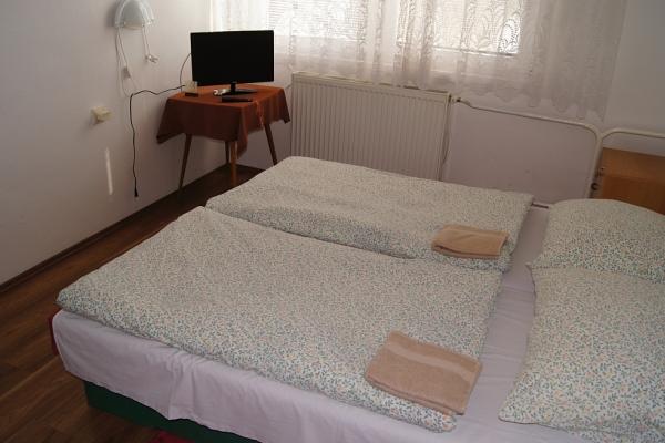 Dvojlôžková izba s výhľadom na Dunaj s TV a chladničkou č.51,54